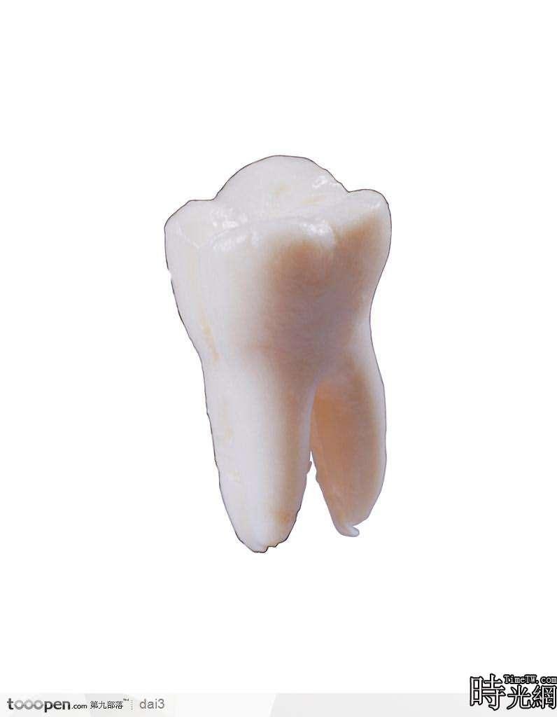 能夠美白牙齒的幾種食物